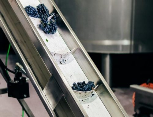 ¿Cómo transportar la uva en bodega con garantías?