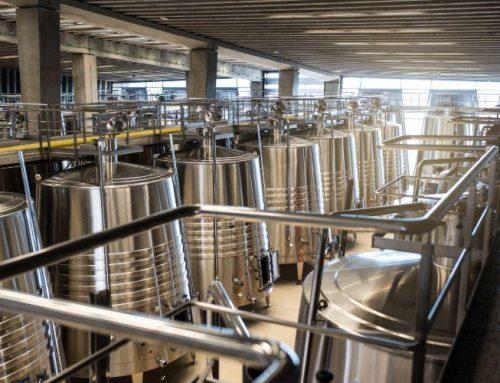 Maquinària per a cellers de vi: essencials i complements