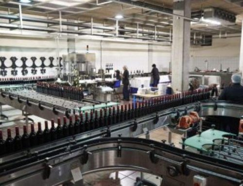 Maquinària per a la verema: automatitzar processos per guanyar productivitat